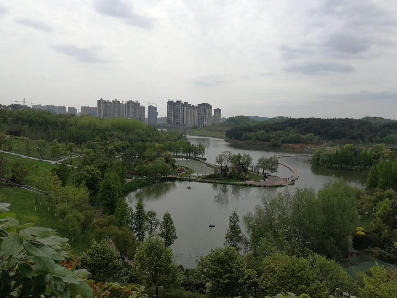 中鐵閱山湖項目C組團二期靠體育基地周邊地形塑造及綠化工程