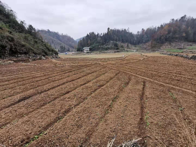 紫云自治县耕地保护.占补平衡.综合土地整治建设项目